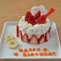 1歳◆誕生日ケーキ