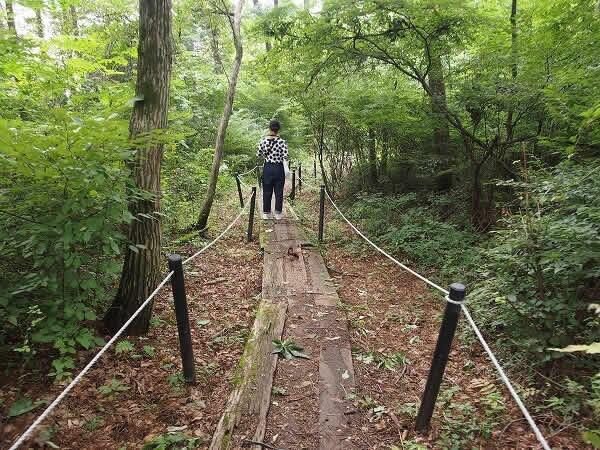 ロイヤルホテル八ヶ岳 散策
